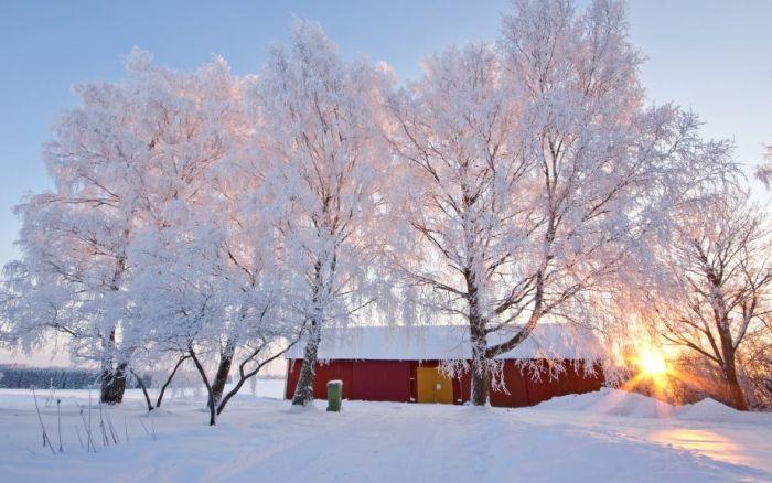 winter 24 چشم اندازهای زیبا از زمستان