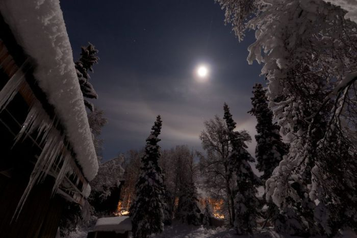 winter 31 چشم اندازهای زیبا از زمستان