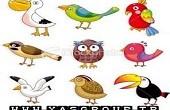 شخصیت شناسی با پرنده ماه تولد شما