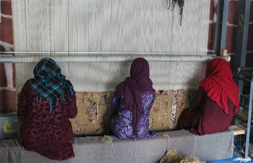 35959 338 زندان زنان/عکس