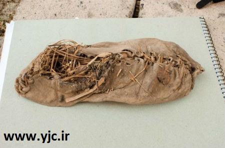 1654552 539 قدیمیترین آثار کشف شده روی زمین / عکس