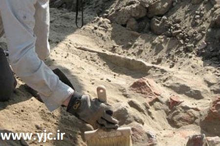 1654562 222 قدیمیترین آثار کشف شده روی زمین / عکس