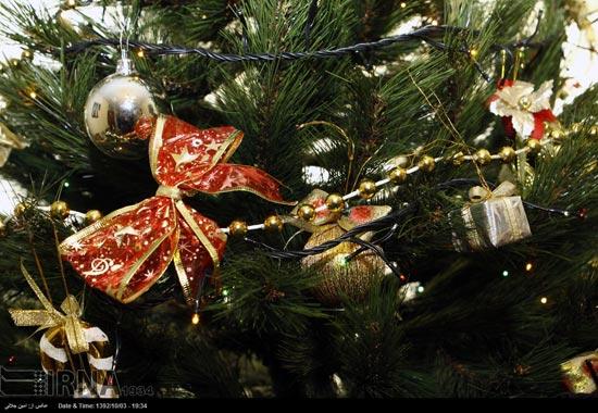 233492 549 حال و هوای جشن کریسمس 2014 در ایران / عکس