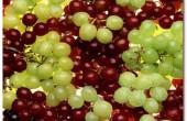 میوه ای که به درمان سرطان پوست کمک می کند