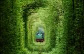 تونل رویایی و شگفت انگیز عشق در اوکراین