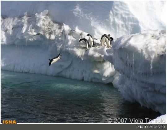مینیعصر یخبندان در راه است؟, جدید 1400 -گهر