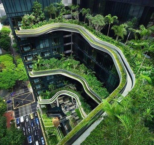 هتلی فوق العاده زیبا در سنگاپور / عکس, جدید 1400 -گهر