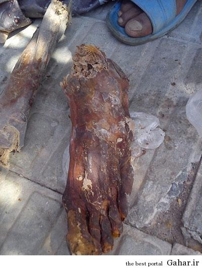1 1141515 کشف جسد مومیایی در بم