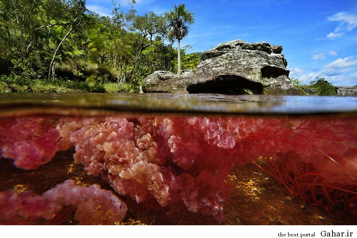 River 4 زیباترین رودخانه جهان