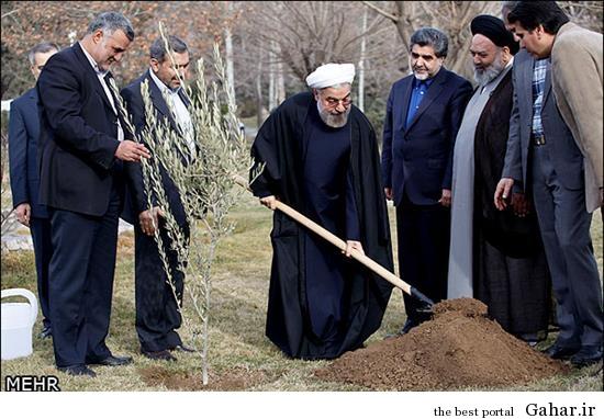 rrmn1 تصاویر درخت کاری روحانی
