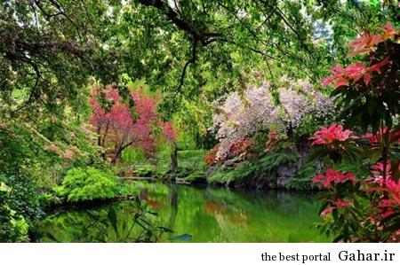 ir2531 باغ های زیبای جهان در یک نگاه / عکس