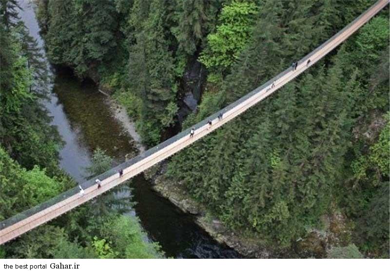 14 11 27 1022523 جالب ترین و وحشتناک ترین پل های دنیا