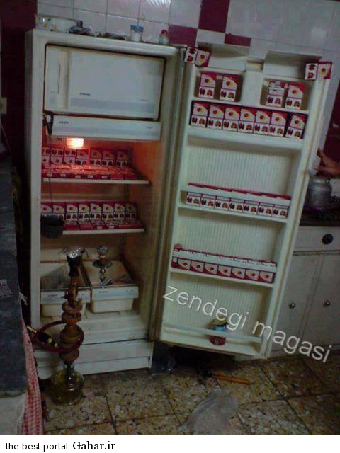 1411424205 عکس خنده دار یخچال یه خونه دانشجویی