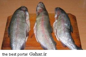 335 نکاتی قابل توجه برای پخت ماهی