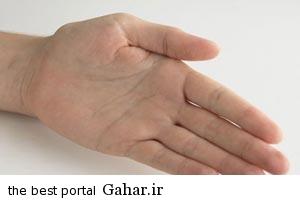 847414420 رمز و رازهای شگفت انگیز بند انگشتان دستتان