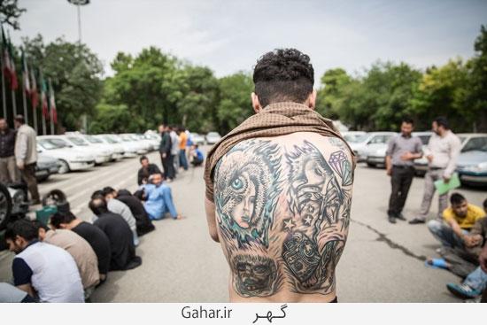 849100 414 عکس های بازداشت 131 سارق در تهران
