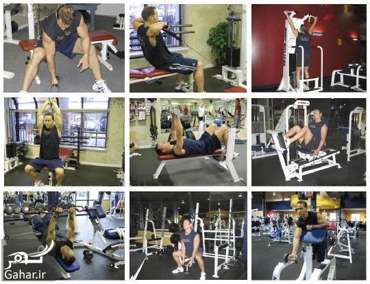 bodybuilding help آموزش تصویری تمام حرکات بدنسازی
