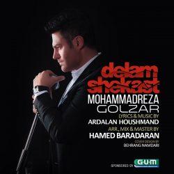Mohammadreza-Golzar-Delam