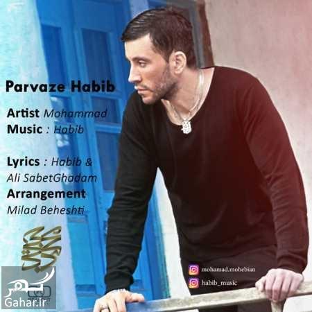 Mohammad Mohebian Parvaze Habib دانلود آهنگ محمد محبیان برای پدرش حبیب
