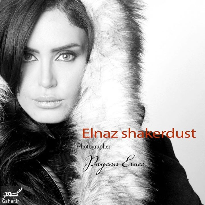 Elnaz Shakerdoost Patogh69 ir 03 عکس جدید الناز شاکردوست در کنار تهمینه میلانی