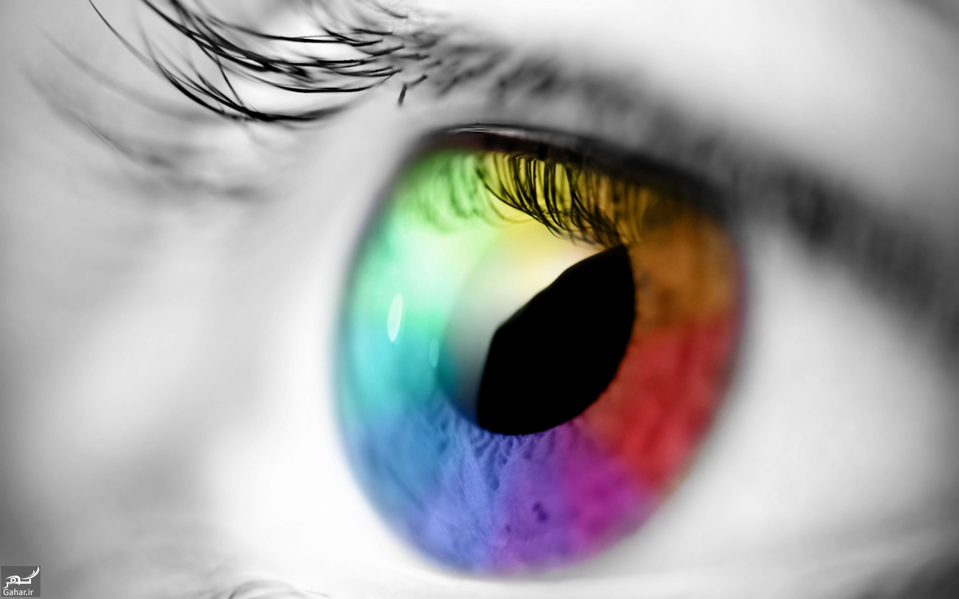 تغییر رنگ چشم با رژیم غذایی واقعیت دارد؟, جدید 99 -گهر