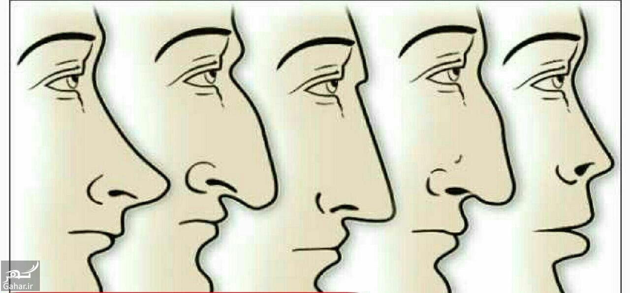 1452354623594861 خودشناسی و شخصیت شناسی از روی بینی