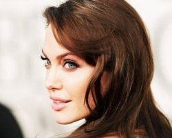 معشوق جدید آنجلینا جولی علت جدایی اش از برد پیت بود