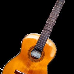 راهنمای کامل انتخاب و خرید گیتار