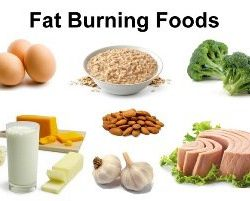 fat-burning-foods-to-lose-weight