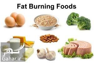 Fat Burning Foods To Lose Weight معرفی مواد غذایی برای چربی سوزی طبیعی