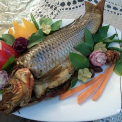 stuffed-fish-decorated