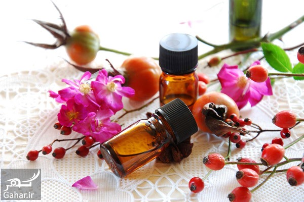 Rosehip Seed Oil معرفی روغن های طبیعی برای جوان سازی پوست