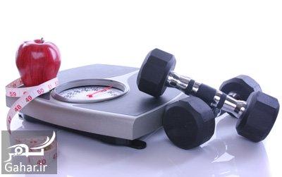 باورهای اشتباه در کاهش وزن باورهای اشتباه در کاهش وزن و لاغر شدن