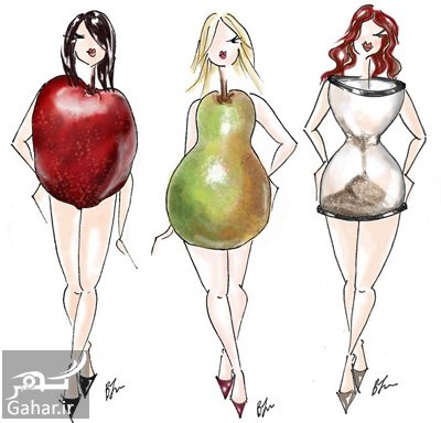 نوع بدن و رژیم غذایی نوع بدن و رژیم غذایی مخصوص به آن