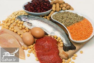 gahar 10 نشانه های کمبود پروتئین کدامند؟