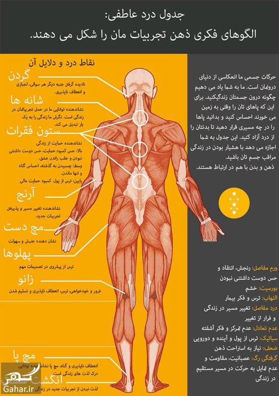 رابطه درد و احساس اینفوگرافیک رابطه درد و احساس