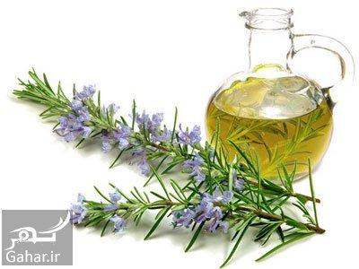 روغن گیاهی برای رشد مو انواع روغن گیاهی برای رشد مو