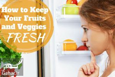 food1 preservation2 راهنمای تازه نگه داشتن میوه و سبزیجات