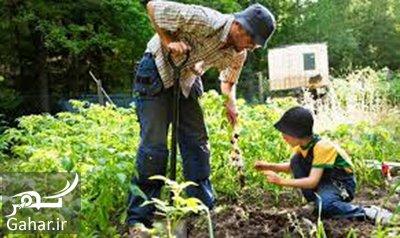 va4 1047 داشتن تناسب اندام با ورزش گلف و باغبانی