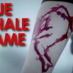 بازی نهنگ آبی چیست ؟ + کسانی که قربانی این بازی شدند