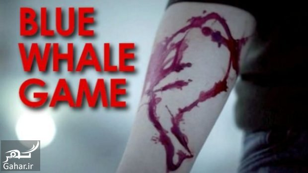 nahang abi بازی نهنگ آبی چیست ؟ + کسانی که قربانی این بازی شدند
