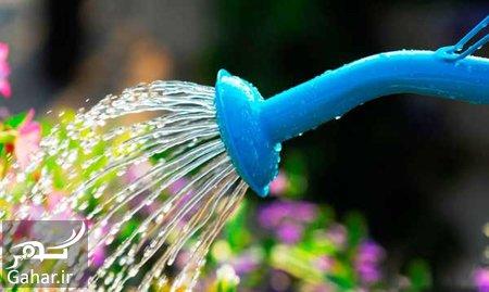 store2 garden1 روش های ساده و مهمی برای نگهداری از باغچه