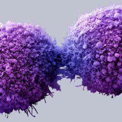 کشف روش های جدید برای درمان سرطان ها