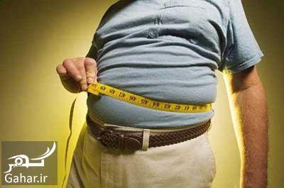 va4 650 آب کردن چربی های شکم در 14 روز
