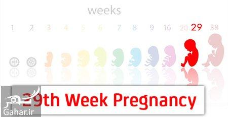 ba4471 نکات مهمی در مورد هفته بیست و نهم بارداری