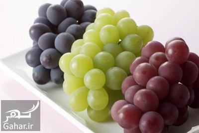 grape2 properties با خواص انگور بیشتر آشنا شوید