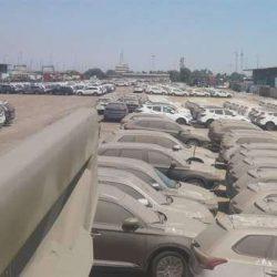 خاک خوردن ۱۰ هزار خودرو در گمرک / عکس