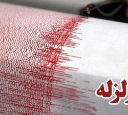 آخرین اخبار و آمار لحظه ای آمار کشته شدگان زلزله