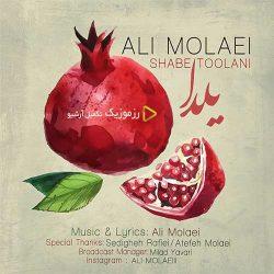 دانلود آهنگ شب طولانی از علی مولایی (تو شب یلدای منی)