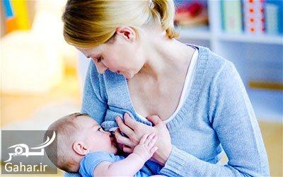 hee1083 داروهای گیاهی برای افزایش شیر مادر